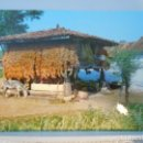 Postales: ASTURIAS. HORREO TIPICO ASTURIANO. POSTAL EDICIONES ALARDE Nº 145.. Lote 165493806