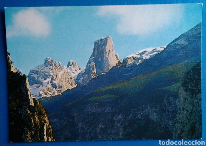POSTAL ASTURIAS PICOS DE EUROPA ED ARRIBAS (Postales - España - Asturias Moderna (desde 1.940))