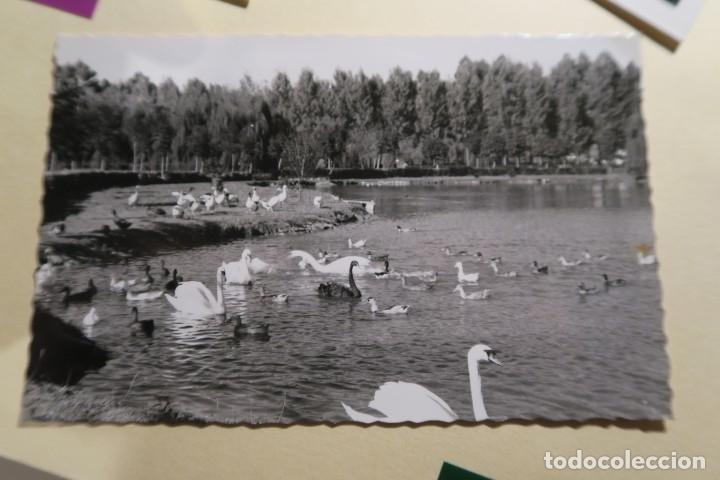 GIJÓN ESTANQUE DE LOS CISNES 162 ARRIBAS, SELLO FÚTBOL 70 CTS (Postales - España - Asturias Moderna (desde 1.940))