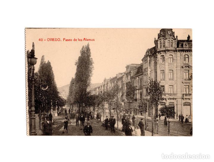 OVIEDO.(ASTURIAS).- PASEO DE LOS ALAMOS. (Postales - España - Asturias Antigua (hasta 1.939))