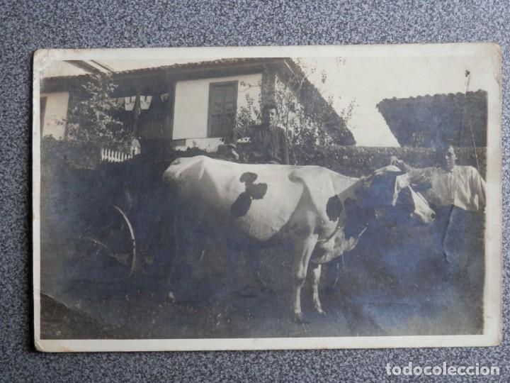 ASTURIAS ?? 5 POSTALES FOTOGRAFICAS MUY ANTIGUAS A IDENTIFICAR (Postales - España - Asturias Antigua (hasta 1.939))