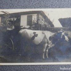 Postales: ASTURIAS ?? 5 POSTALES FOTOGRAFICAS MUY ANTIGUAS A IDENTIFICAR. Lote 192060716