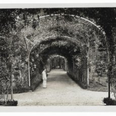 Cartoline: OVIEDO - LA ROSALEDA - P29585. Lote 192387957
