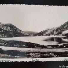 Postales: POSTAL DE COVADONGA. LAGO ENOL.. Lote 221878986