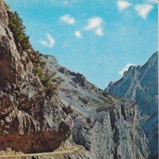 Postales: PICOS DE EUROPA, LOS COLLADOS - FOTO ALSAR Nº56 - EDITADA EN 1968 - S/C. Lote 222136353