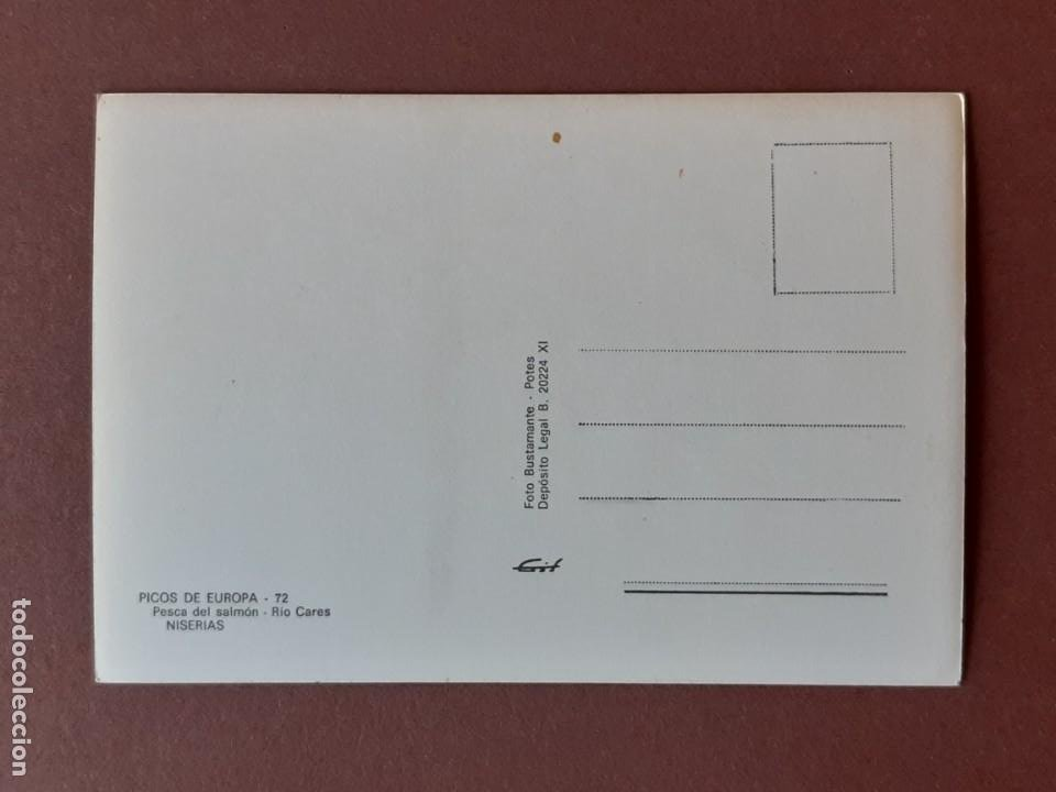 Postales: POSTAL 72 BUSTAMANTE. PESCA DEL SALMÓN CARES NISERIAS PICOS DE EUROPA. ASTURIAS. 1968. SIN CIRCULAR. - Foto 2 - 229092130
