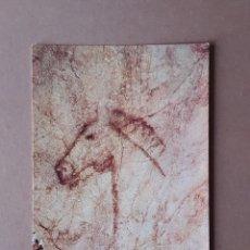 Cartes Postales: POSTAL 1 BERGAS. CABALLO LÍNEA NEGRA CUEVA TITO BUSTILLO. RIBADESELLA. ASTURIAS. 1973. SIN CIRCULAR.. Lote 231043550