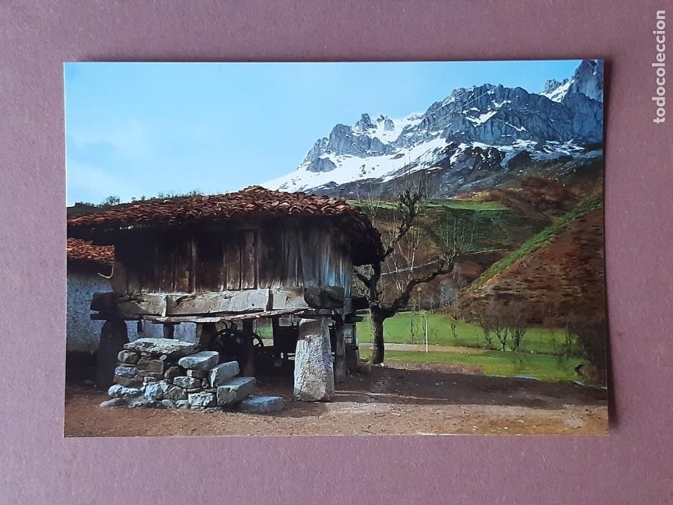 POSTAL 419 ALCE. HÓRREO TÍPICO. ASTURIAS. 1970. SIN CIRCULAR. (Postales - España - Asturias Moderna (desde 1.940))