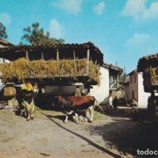 Postales: ASTURIAS, HÓRREO ASTURIANO – EDICIONES ALARDE Nº265 – S/C. Lote 288207613