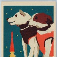 Postales: BELKA AND STRELKA SPACE DOGS SOVIET COSMOS ANIMAL ROCKET UNUSUAL NEW POSTCARD - ANNA ANTONYUK. Lote 278752523