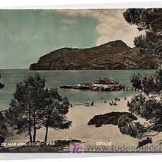 Cartes Postales: MALLORCA. CAMP DE MAR. DETALLE. ZERKOWITZ. . CIRCULADA. Lote 5202599
