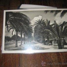 Postales: PALMA DE MALLORCA PASEO DE SAGRERA . Lote 8629857