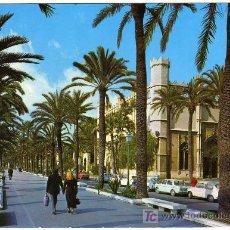 Postales: BONITA POSTAL - PALMA DE MALLORCA - PASEO DE SAGRERA Y LONJA. Lote 26462939