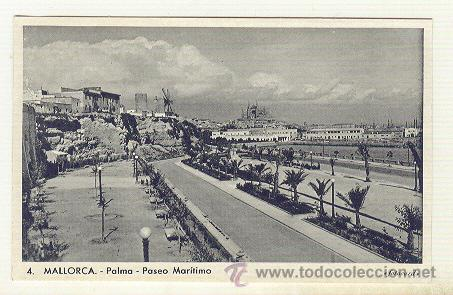PALMA DE MALLORCA VISTA DE EL PASEO MARITIMO MOLINOS Y CATEDRAL (Postales - España - Baleares Moderna (desde 1.940))