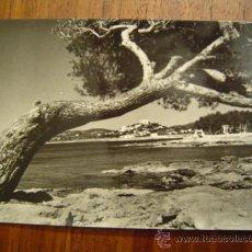 Postales: IBIZA ( BALEARES ) SERIE I NÚM. 3664 - SANTA EULALIA DEL RIO - PLAYAS Y VISTA PARCIAL. Lote 25980838