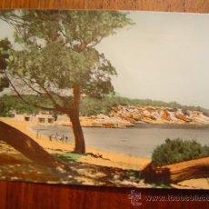 Postales: IBIZA ( BALEARES ) - 66 SERIE BC - SAN ANTONIO ABAD - PLAYA LA BASSA - FOTO VIÑETS. Lote 25980837