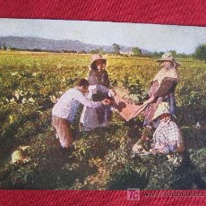 Postales: MALLORCA - COSTUMBRES. Lote 17096133