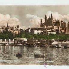 Postales: PALMA - MALLORCA - LONJA Y CATEDRAL. Lote 17802556