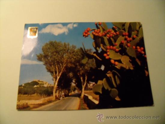 POSTAL DE MALLORCA. CAPDEPERA. AÑO 1963. SIN CIRCULAR. POSTAL 242 (Postales - España - Baleares Moderna (desde 1.940))