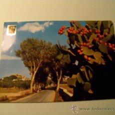 Postales: POSTAL DE MALLORCA. CAPDEPERA. AÑO 1963. SIN CIRCULAR. POSTAL 242. Lote 19518474