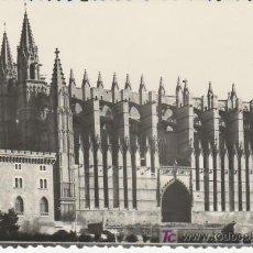 Postales: CATEDRAL PALMA.MALLORCA . MAS COLECCIONSIMO EN GENERAL EN RASTRILLOPORTOBELLO. Lote 21215046