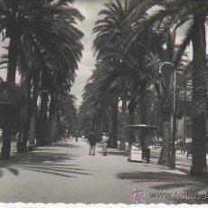 Postales: MALLORCA.PALMA.PASEO DE SAGRERA. MAS POSTALES Y COLECCIONISMO EN RASTRILLOPORTOBELLO. Lote 22119766