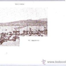 Postales: MALLORCA- EL TERRENO -38- JOSE TOUS- (5053). Lote 24280303