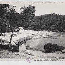 Postales: PALMA DE MALLORCA. HOTEL CAMP DE MAR ( ANDRAITX ) FOTO BALEAR. SIN CIRCULAR. Lote 26206119