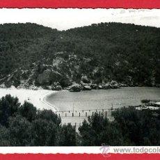 Postales: ANDRAITX, PALMA DE MALLORCA, HOTEL CAMP DE MAR, P61815. Lote 27046137
