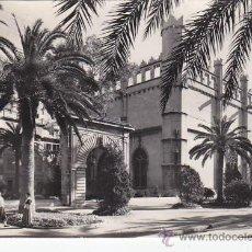 Postales: PALMA DE MALLORCA (BALEARES): PASEO DE SAGRERA: LA LONJA, EN TARJETA POSTAL CASA PLANAS, CIRCULADA.. Lote 27432598