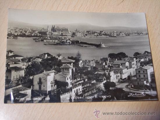 PALMA DE MALLORCA (LA CATEDRAL DESDE EL TERRENO) ZERKOWITZ (Postales - España - Baleares Moderna (desde 1.940))