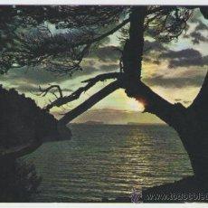 Postales: IBIZA - SAN ANTONIO PUESTA DE SOL - EDICIÓN EXCLUSIVAS CASA FIGUERETAS - POSTAL. Lote 30501419