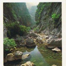 Postales: POSTAL MALLORCA - TORRENT DE PAREIS - ESCORCA - Nº 31. Lote 31873148