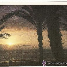 Postales: +-+ PV229 - POSTAL IBIZA - SANT ANTONI DE PORTMANY. Lote 33098454