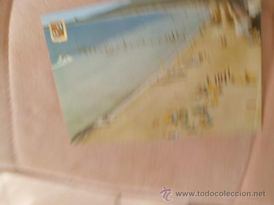 POSTAL MALLORCA ALCUDIA VISTA DE LA PLAYA S/C A-116 (Postales - España - Baleares Moderna (desde 1.940))