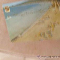 Postales: POSTAL MALLORCA ALCUDIA VISTA DE LA PLAYA S/C A-116. Lote 33412928