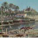 Postales: MUELLE DE PESCADORES DE PALMA DE MALLORCA. ISLAS BALEARES. ESPAÑA. COLECCIONISMO.. Lote 33502898