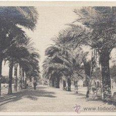 Postales: PALMA DE MALLORCA.- PASEO DE SAGRERA.. Lote 35119747