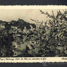 Postales: POSTAL DE DEIÀ: LA VILA AMBB AMETLLETS EN FLOR (ZERKOWITZ NUM. 7869). Lote 36089628