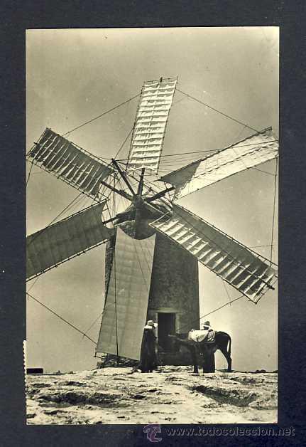 POSTAL DE FORMENTERA: MOLÍ TÍPIC (FOTO VIÑETS NUM. 203) (Postales - España - Baleares Antigua (hasta 1939))