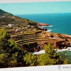 Postcards - ANTIGUA FOTO POSTAL BANYALBUFAR - DETALLE - NO CIRCULADA - ED. ZERKOWITZ. - 39523786