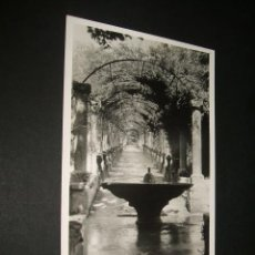 Postales: MALLORCA JARDINES DE ALFABIA EL SURTIDOR POSTAL FOTOGRAFICA. Lote 42583052
