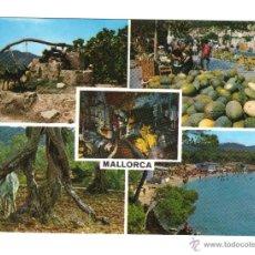 Postales: MALLORCA. VARIAS VISTAS: ANIMALES, MERCADO, ... POSTALES, Y MUCHO MÁS, EN RASTRILLO PORTOBELLO. Lote 43391248