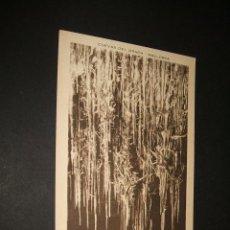 Postales: MANACOR MALLORCA CUEVAS DEL DRACH FLECO DE MANTON. Lote 43819788