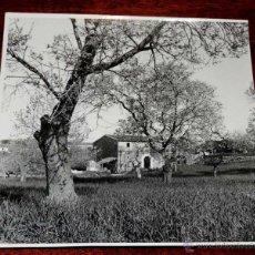 Postales: FOTOGRAFIA ANTIGUA DE CASA DE LABOR DE PAYESES EN SON SERVERA (MALLORCA)) )), MIDE 17,5 X 17,5 CMS. . Lote 45057877