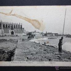 Postales: ANTIGUA POSTAL DE PALMA DE MALLORCA. CATEDRAL. SIN CIRCULAR. Lote 45417213