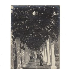 Postales: POSTAL FOTOGRÁFICA BALEARES - MALLORCA - POLLENSA (POLLENÇA). SIN CIRCULAR.. Lote 46446430