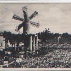 Postales: POSTAL MANACOR LOS MOLINOS ED. AM N0 178 MALLORCA BALEARES. Lote 49102903