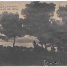 Postales: SERIE COMPLETA 12 POSTALES LLUCHMAYOR LLUCMAJOR ESTACION MERCADO HOTEL PLAZA MALLORCA ED. R. Y F.. Lote 51571860