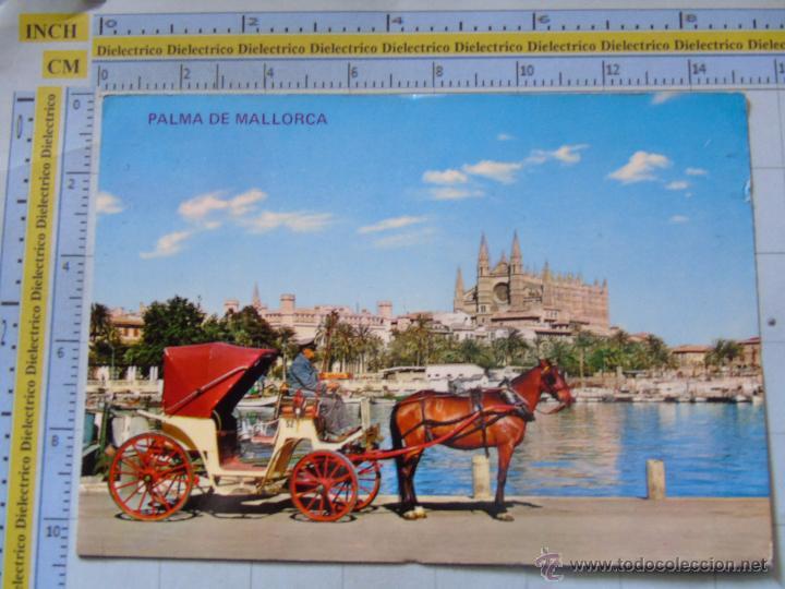 POSTAL DE MALLORCA. AÑO 1968. PALMA, BAHÍA, LONJA, CATEDRAL, COCHE DE CABALLOS. 707 (Postales - España - Baleares Moderna (desde 1.940))